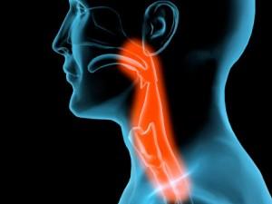 Рак на шията и главата
