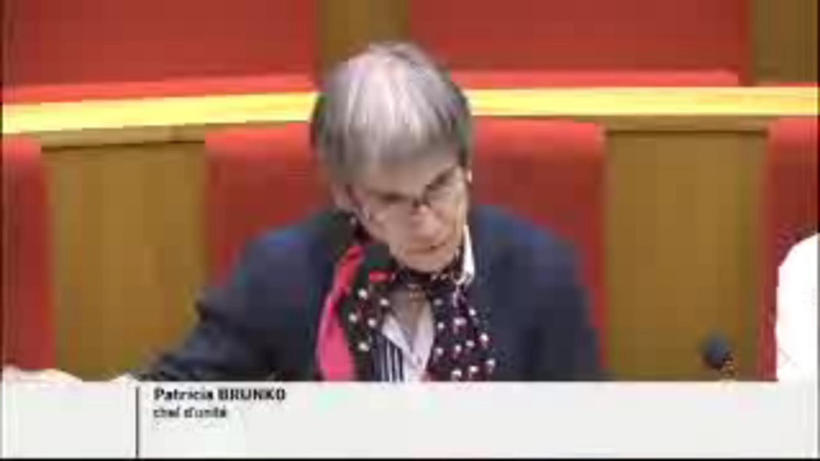 Патриция Брунко във френския парламент