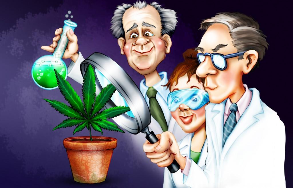 Какво казва науката за марихуаната
