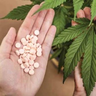 Канабис срещу лекарства