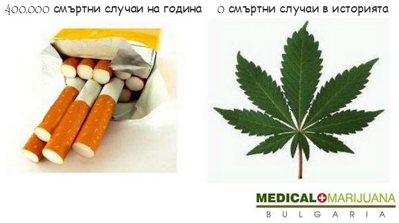 Марихуана срещу тютюн