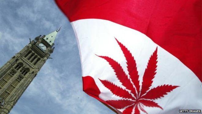 Канадският върховен съд узакони всички деривати на медицинската марихуана!