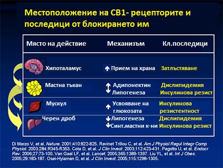 CB1 рецептори