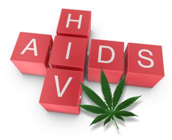 Възможно ли е ключът към лечението на ХИВ да се крие в канабис
