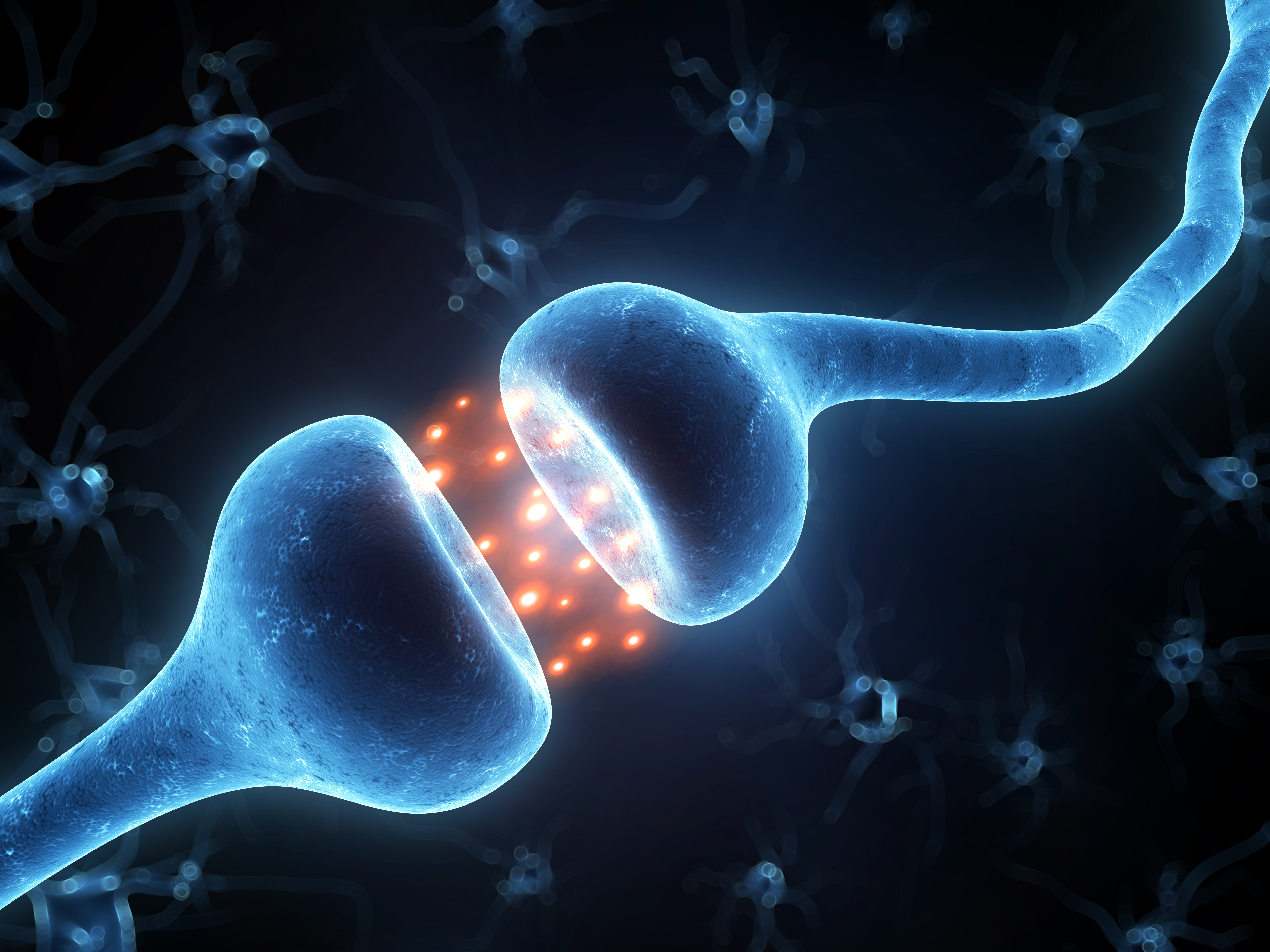 11 зашеметяващи факта за ендоканабиноидната система