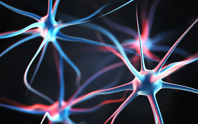 Невробиолози откриха неизвестна досега функция на канабиноиден рецептор